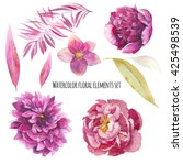 watercolor floral elements set. ... | Shutterstock . vector #425498539