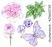 set of watercolor hand painted... | Shutterstock . vector #425643739