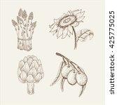 sunflower  olive  asparagus ...   Shutterstock .eps vector #425775025