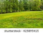 meadow in forest   Shutterstock . vector #425895415