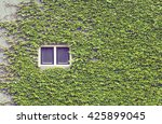 Green Ivy Covering Building...