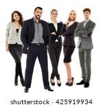 business team in full length... | Shutterstock . vector #425919934
