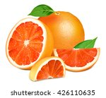 ripe grapefruits with leaves. ... | Shutterstock .eps vector #426110635