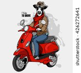 vector cow man in a hat. bull ... | Shutterstock .eps vector #426272641