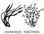 seaweed black silhouettes ... | Shutterstock .eps vector #426274651