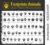 animals tracks   north american ... | Shutterstock .eps vector #426351439