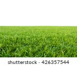 green grass on white background | Shutterstock . vector #426357544