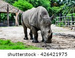 Rhinoceros In The Zoo...