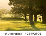 golf course at dusk back lit by ... | Shutterstock . vector #426492901