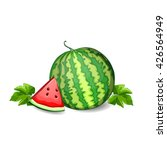 watermelon isolated on white... | Shutterstock .eps vector #426564949