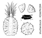 vector hand drawn pineapple and ...   Shutterstock .eps vector #426696184