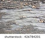 crack rough tree wood texture... | Shutterstock . vector #426784201
