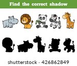 find the correct shadow ... | Shutterstock .eps vector #426862849