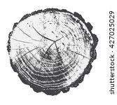 structure of wood. cross... | Shutterstock .eps vector #427025029
