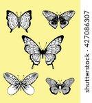 stylized butterflies. set... | Shutterstock .eps vector #427086307