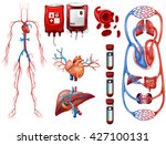 blood types and breathing... | Shutterstock .eps vector #427100131