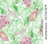 watercolor seamless pattern... | Shutterstock . vector #427267879