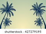 silhouette palm tree and sunset ... | Shutterstock .eps vector #427279195