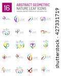 geometric leaf icon set. thin... | Shutterstock .eps vector #427331719