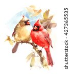 Male And Female Cardinals...