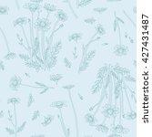 botanical illustration... | Shutterstock .eps vector #427431487