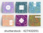 creative trendy cards set. wavy ... | Shutterstock .eps vector #427432051