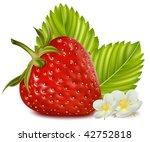 photorealistic vector... | Shutterstock .eps vector #42752818