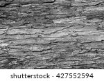 Small photo of Black and white photo shows the stochastic structure of the texture of tree bark