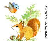 cute squirrel. watercolor... | Shutterstock . vector #427560751