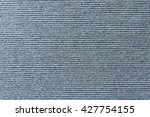 the texture background of the... | Shutterstock . vector #427754155