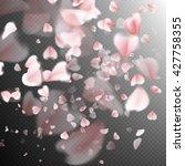 Pink Petals On Transparent...