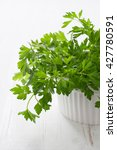 fresh green parsley on the...   Shutterstock . vector #427780591