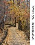 a serene winding hiking trail... | Shutterstock . vector #42778621