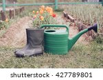 rubber boots with watering can... | Shutterstock . vector #427789801