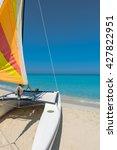 water sports | Shutterstock . vector #427822951