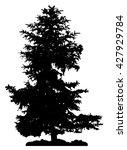 pine tree silhouette   Shutterstock .eps vector #427929784