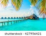 beautiful tropical maldives... | Shutterstock . vector #427956421