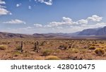 Desert In Nevada