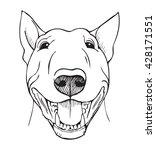 bull terrier  bull terrier... | Shutterstock .eps vector #428171551