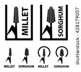 millet sorghum cereal black... | Shutterstock .eps vector #428179057