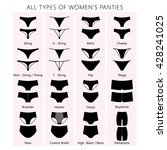 all types of women's panties.... | Shutterstock .eps vector #428241025