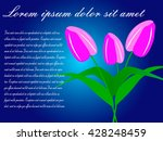 greeting card with tulips | Shutterstock .eps vector #428248459