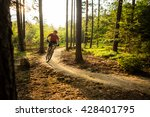 mountain biker riding on bike... | Shutterstock . vector #428401795