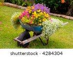 Wheelbarrow Full Of Colorful...