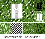 tropical palm leaf vector... | Shutterstock .eps vector #428583454