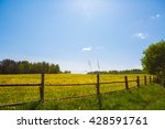 corral for farm to cattle.... | Shutterstock . vector #428591761
