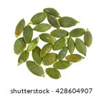 pumpkin seeds isolated on white ... | Shutterstock . vector #428604907