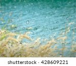 close up drops of rain on glass ... | Shutterstock . vector #428609221