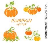 pumpkin in flat style. ... | Shutterstock .eps vector #428641714