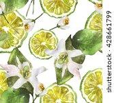 bergamot citrus fruit section... | Shutterstock . vector #428661799
